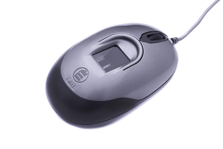Биометрическая мышь серая